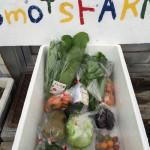 野菜宅配便